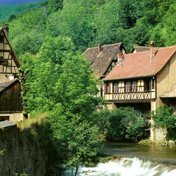 бізнес ідея екологічний туризм